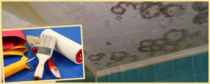 Плесень на потолке, шпатель, кисть и валик