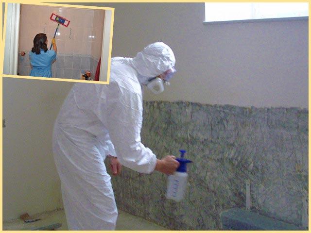 Уборка в ванной удаление плесени
