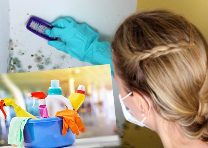 Удаление плесени в ванной антисептиками
