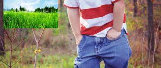Ребенок испачкал джинсы в траве