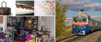 Поезд, сумка, разбросанные вещи и клопы в квартире