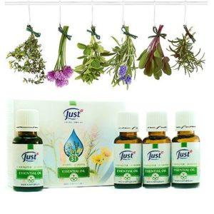 эфирные масла для избавления от мух