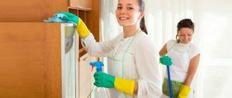 Чистящие средства для уборки дома