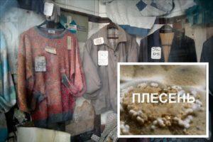 Плесень на грязных пиджаках