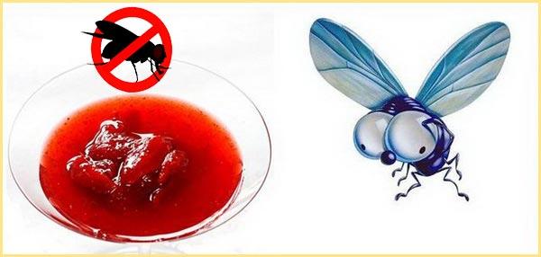 Самодельные приманки против мух