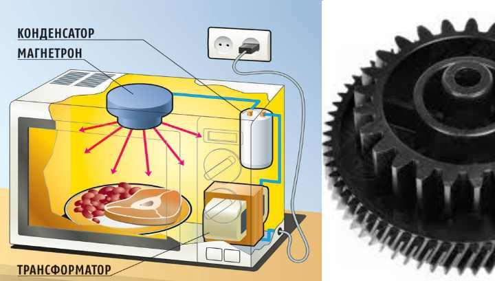 причины, по которым в микроволновке не крутится тарелка