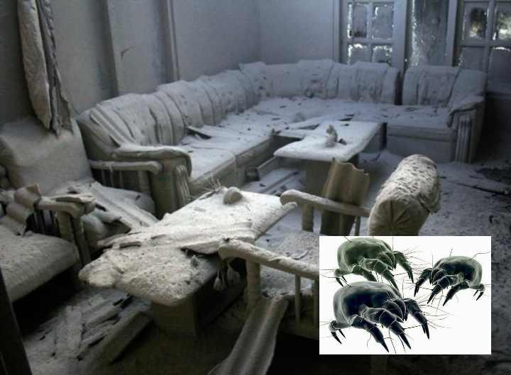 Также снабжают воздух мельчайшими волокнами все текстильные изделия в доме
