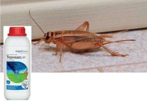 Инсектицид в виде спрея, эффективен против тараканов, пауков, сверчков.