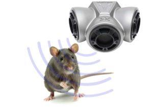 Один из самых современных способов борьбы с мышами и крысами – ультразвуковые отпугиватели