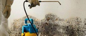 Специальный раствор Хомеенпойсте - с его помощью обрабатывают деревянные и бетонные потолки.