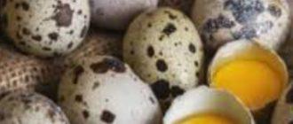 Яйца уж точно безопаснее покупать в магазинах и супермаркетах