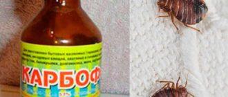 Почему яд «Карбофос» находится в свободной продаже?