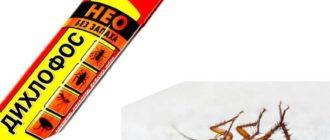 Воздействие инсектицида происходит через панцирь, желудочно-кишечный тракт и дыхательные пути.