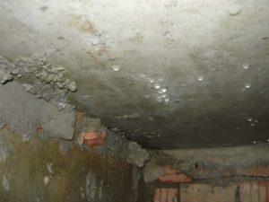 Если на стенах квартиры есть обои, то они будут отслаиваться, а под ними начнет появляться плесень.
