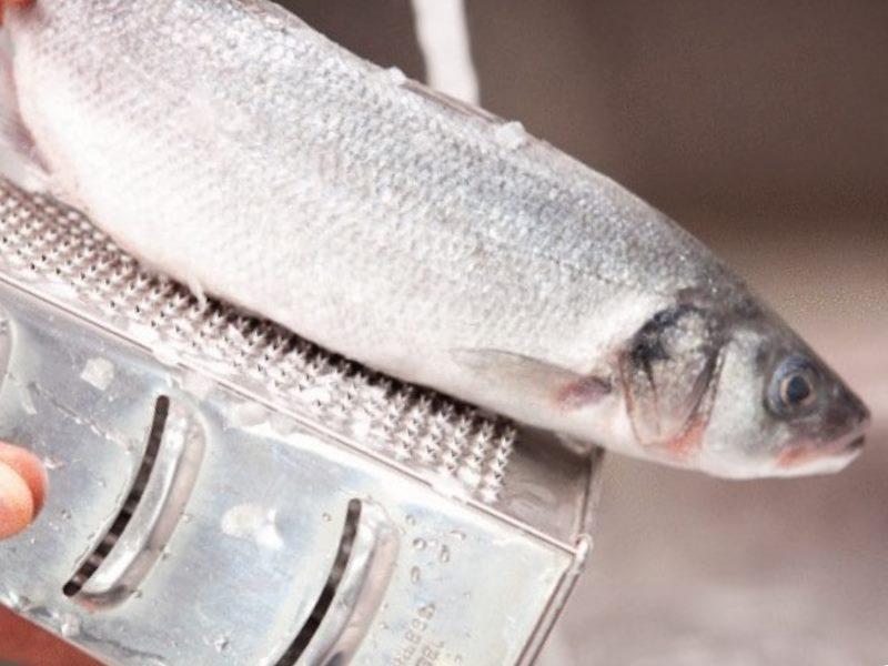 Как чистить рыбу в домашних условиях?
