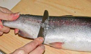 Как почистить рыбу быстро и без грязи (даже окуня с мелкой чешуей)