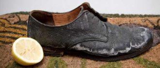 нужно высушить кроссовки