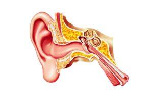 Как правильно чистить уши и что делать с ушной серой