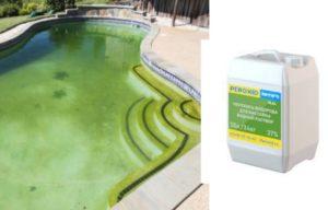 Как почистить бассейн от зелени и других загрязнений