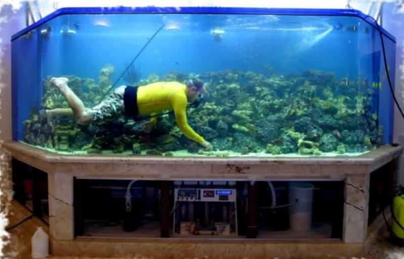 огромный аквариум