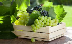 обязательно осмотрите гроздь на предмет испортившихся