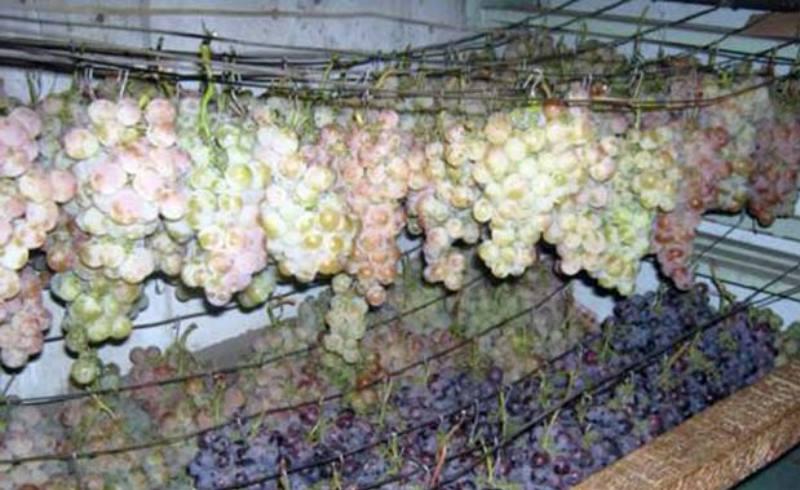 На тонкую проволоку, бечёвку, шнурок привязываются грозди
